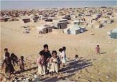 Sahara occidental,Polisario,Tindouf,réfugiés sahraouis,République arabe sahraouie démocratique,Bir Lehlou,Smara,Laâyoune,Dakhla,autodétermination,RASD,peuple sahraoui,Aminatou Haider,Tifariti,occupation marocaine