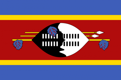 Flag_of_Swaziland.svg.png